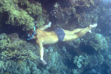 man swimming underwater on a coral background