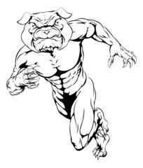 Running tough bulldog