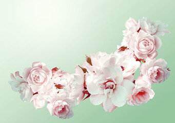 Beautiful  horizontal frame with a bouquet of white roses
