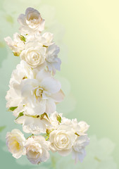 Beautiful vertical frame with a bouquet of white roses