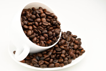 Close-up of coffee bean