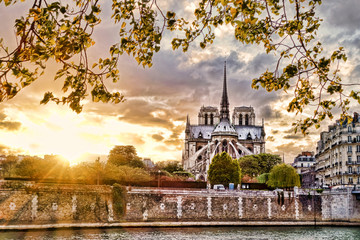 Notre Dame cathedral in spring time, Paris, France