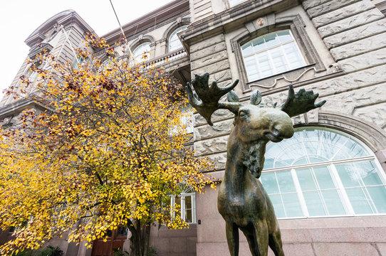 Finnish Museum of Natural History in Helsinki