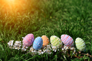 Wall Mural - Row of Easter eggs in Fresh Green Grass