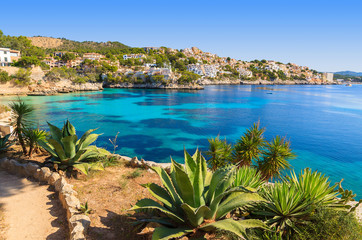 Fototapete - Tropical plants in Cala Fornells bay, Majorca island, Spain