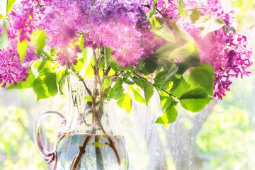 Flowering branch of lilac in a glass jar