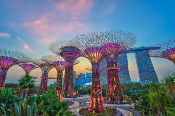 Aluminium Prints Asian Famous Place sunset at Singapore city