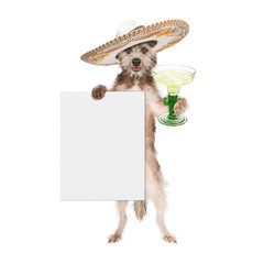 Wall Mural - Dog Wearing Sombrero Holding Margarita and Sign