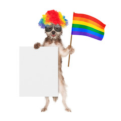 Fototapete - Funny Dog Supporting Gay Rights