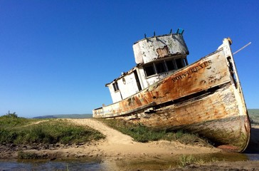 Wall Murals Shipwreck Point Reyes ship wreck