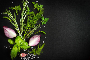 Black food background with fresh aromatic herbs and spices, copy