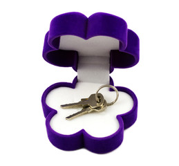 Close-up view of purple gift box with keys isolated