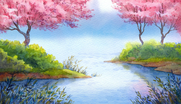 Spring watercolor landscape. Flowering trees over lake