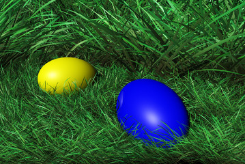 Blue and Yellow Eggs