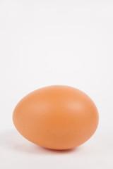 Single chicken egg  on white  paper background