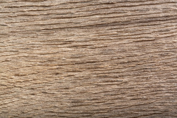 Scratched wood (bog oak) texture. Dramatic light and shadows.