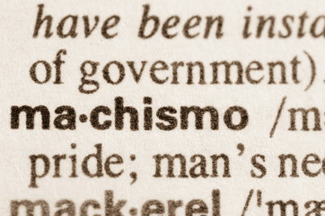 Dictionary definition of word machismo