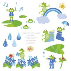 Frogs in the rainy season