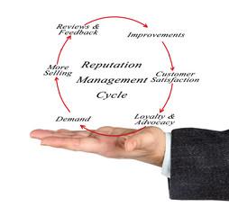 Reputation management cycle