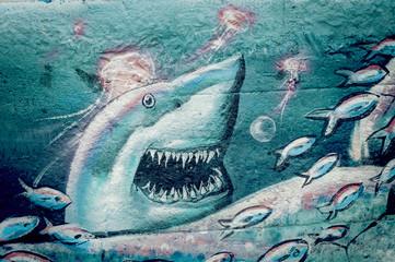 Graffiti requin