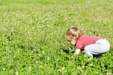 child playing in the field picking flowers