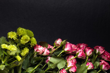 Roses with a lot of leaves on a black background. Space for text