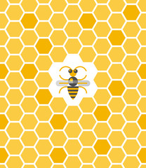 Sweet geometric pattern with honeycomb and bee