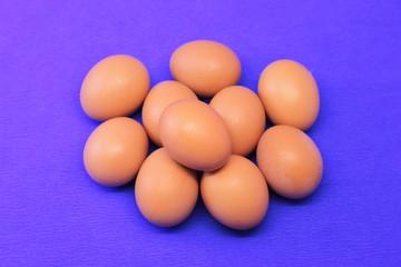 куриные яйца на синем фоне