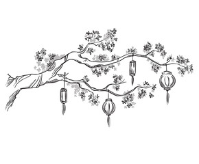Tree branch with Chinese lanterns