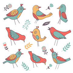 Cute colorful birds collection