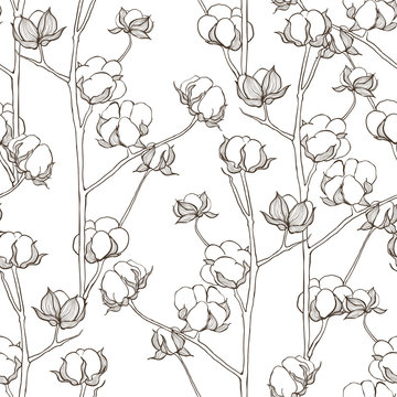 Seamless pattern with cotton branches. Vector vintage background