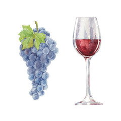 Grapes and red wine in a glass  isolated on a white background.V