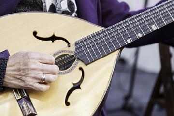 Traditional mandolin