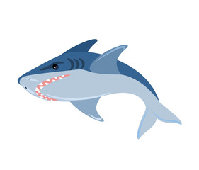 Vector shark illustration