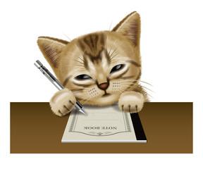 Shorthair cat