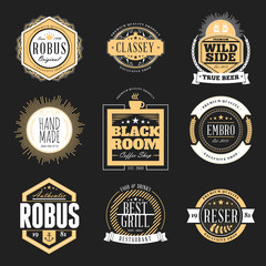 Set of Retro Vintage Badges and Logotypes