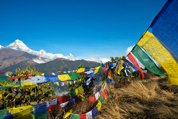 Pooh Hill Trek Scene, Annapurna Range, Nepal