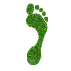 Green grass print of human foot