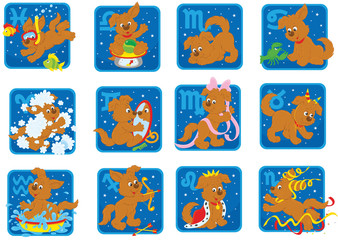 Zodiac signs with a funny brown pup