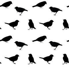 Black and white vector seamless pattern with birds