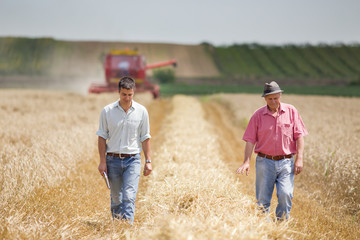 Agriculture partners on wheat harvest
