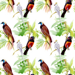 Watercolor seamless pattern with tropical birds and flowers
