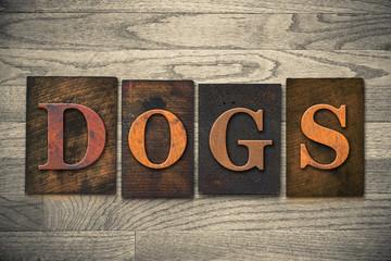 Dogs Wooden Letterpress Theme