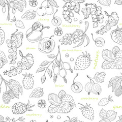 Vector seamless pattern with berries on a white background