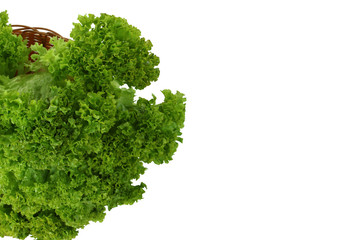 lettuce leaves in a basket