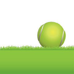 Tennis Ball in Grass Background Illustration