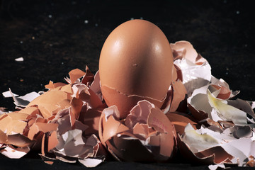 Bunch of eggs whole and crushed shells