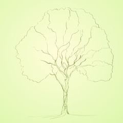 green tree sketch line silhouette vector
