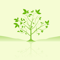 green tree with leaves reflection vector