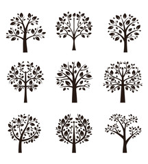 Wall Mural - Tree silhouette with roots and branches